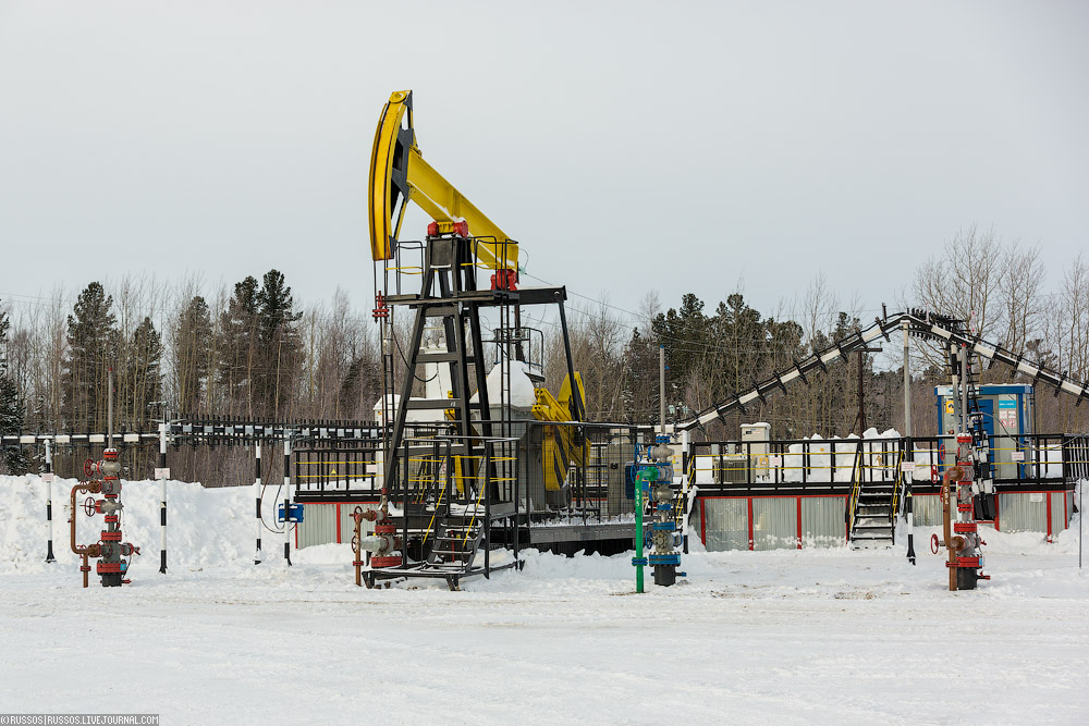 Цена нанефть марки Urals в 2017г. увеличилась на26,6%